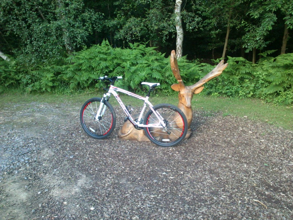 Specialized Hard Rock Disc Bicycle
